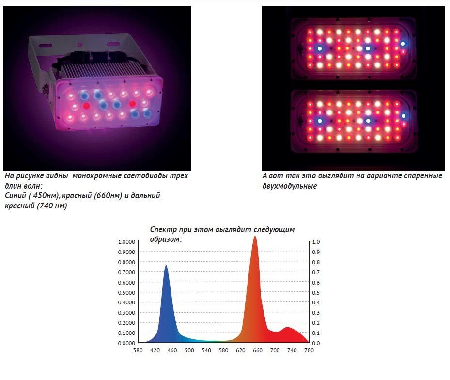 Спектр Oscon светильника Fitocon-M