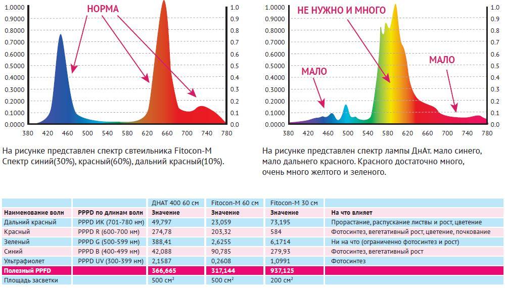 Сравнение ДНАТ и Fitocon-M