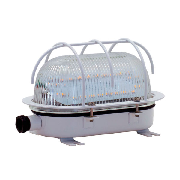 Светильник для ЖКХ светодиодный ДПП 24-15 с сеткой